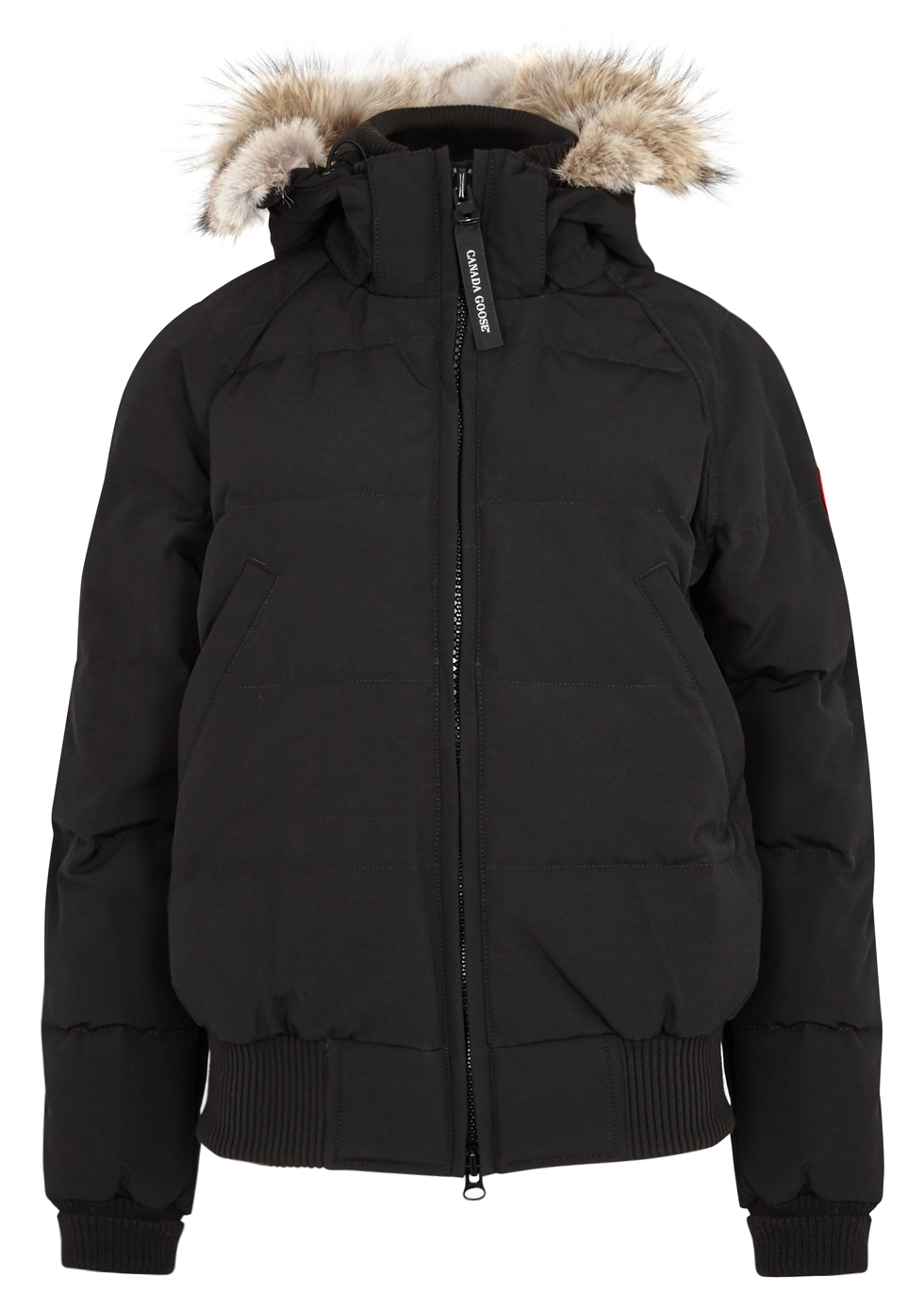 canada goose parka or bomber