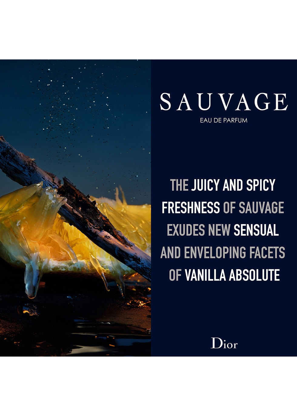 Sauvage Eau de Parfum 100ml - Dior