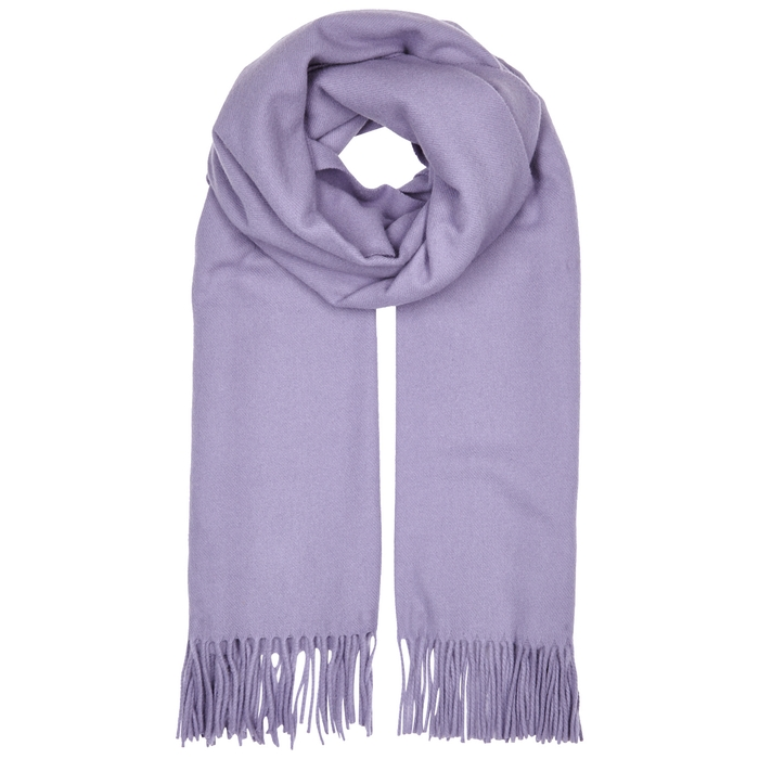 Acne Studios Canada Light Blue Wool Scarf