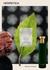 Patchoulight Eau De Parfum 100ml - HERMETICA