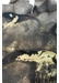 Afterglow art print - Paradisco Productions