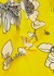 Lavonia floral-print silk top - Alice + Olivia