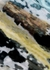 Serpentes multicoloured reptile print tights - Wolford