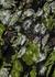 Black floral-print georgette dress - byTiMo