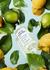 Under The Lemon Trees Eau De Toilette 100ml - Maison Margiela