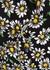Daisy-print tiered maxi dress - M Missoni