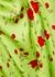 Koko floral-print satin mini dress - De La Vali