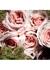 Le Vestiaire Des Parfums Discovery Set - Yves Saint Laurent