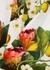 Juliet floral-print cotton maxi dress - Borgo de Nor