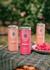 Raspberry Hard Seltzer 250ml - 58 Gin