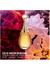 J'adore eau de parfum Infinissime 100ml - Dior