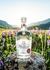 Platino Rum - Montanya Distillers