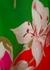 Floral-print silk crepe de chine trousers - Valentino