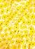 Poppy floral-print cotton maxi dress - Diane von Furstenberg
