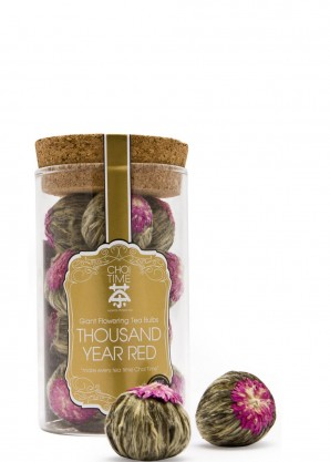 Choi Time Thousand Year Red Giant Flowering Tea Bulbs