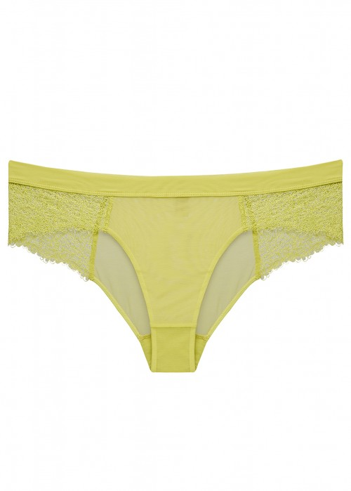 ADINA REAY 28DD TO 36G SAM LIMONCELLO BIKINI BRIEF